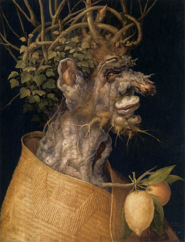 Winter (1563)