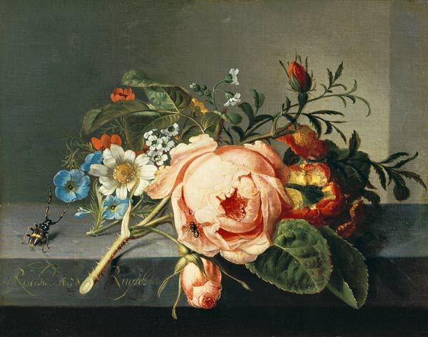 Ruysch Rose Branch with Beetle and Bee.jpg