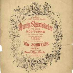 Now the shadows darken : Für Musik : nocturne for soprano or tenor