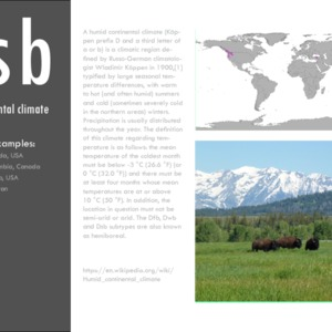 Dsb_Case studies.pdf