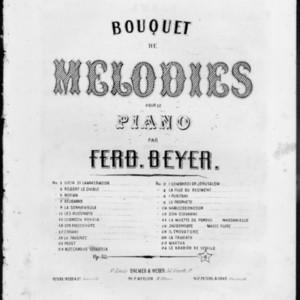 Norma de Bellini : bouquet de mélodies : op. 42 /