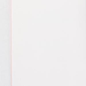 ervinscholars-profilebooklet-004.jpg