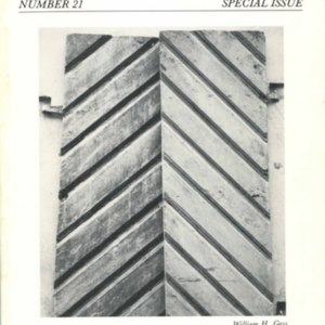 A special issue of <em>River Styx</em> devoted to &ldquo;Family Album&rdquo; from <em>The Tunnel</em>