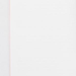 ervinscholars-profilebooklet-006.jpg