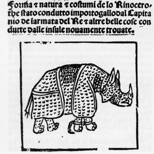 Title page with Rhinoceros