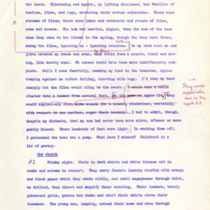 MSS051_III-2_In_The_Heart_Draft_for_Purdue_Reading_00a033.jpg