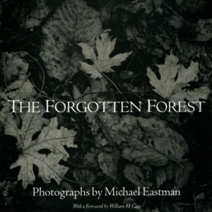 <em>The Forgotten Forest</em> dust jacket