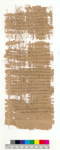 Legal Proceedings Concerning Sheep and Goats (recto); Notations Concerning Diastromata (verso)